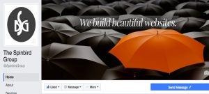 spinbird-facebook
